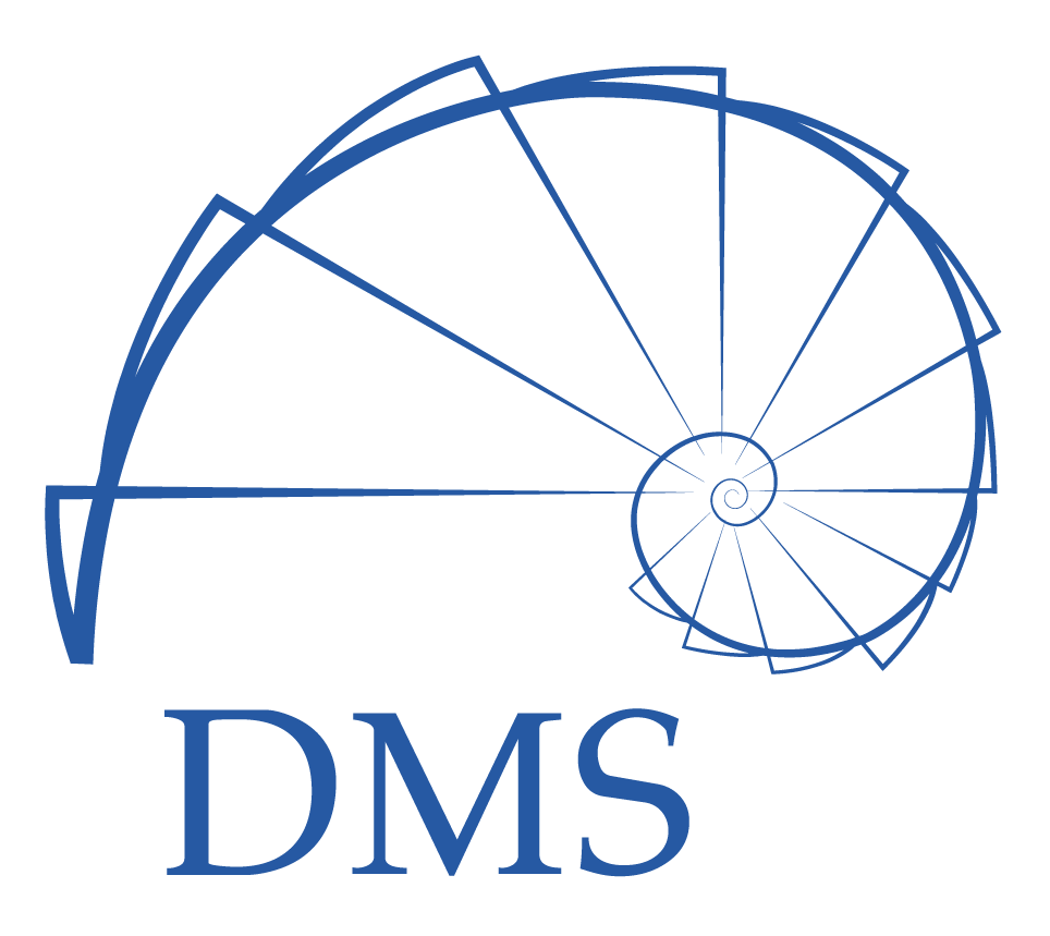 DMS - Betty Blocks partner