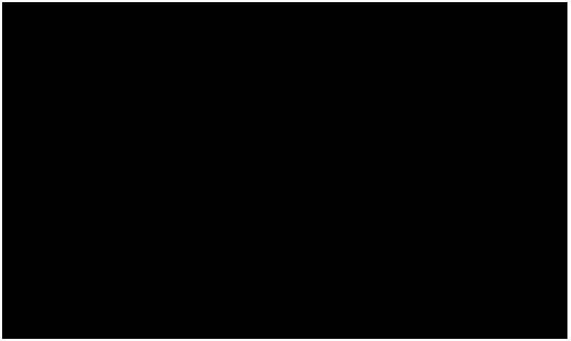NEN-Logo-transparant-BW